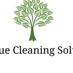 ForesqueCleaningSolutions